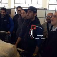 محمد رضا گلزار   مژده کنسرت رضاگلزار به مردم رشت