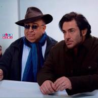 محمد رضا گلزار | دلم میخواد در بخش «نمایشهای ویژه» جشنواره جهانی فیلم فجر